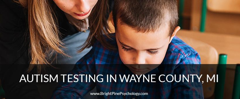 Autism Testing Service In Wayne County Michigan